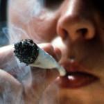 Marijuana per uso medico: dove è liberalizzata non aumenta il consumo