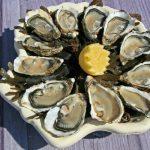 Gastroenterite da norovirus: allarme rosso sulle ostriche