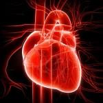 Ictus, infarto e diabete: mese della prevenzione gratuita