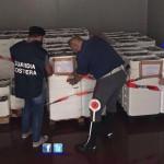 Roma, sequestrate due tonnellate di pesce senza etichettatura