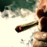 Arrivano Spice e K2, la cannabis sintetica 85 volte più potente